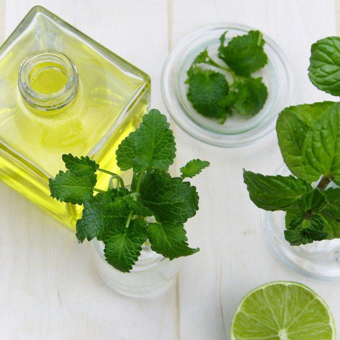 Peppermint Oil As Treatment